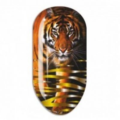 Nail Art Mollon Pro Stikers Mollon Pro J014 naklejki do zdobienia