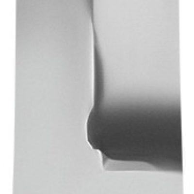 Staleks Profesjonalne cęgi do paznokci wrośniętych Expert 61 12mm NE-61-12